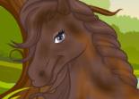 Toiletter un cheval ou une licorne