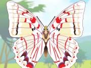 Coloriage de papillons